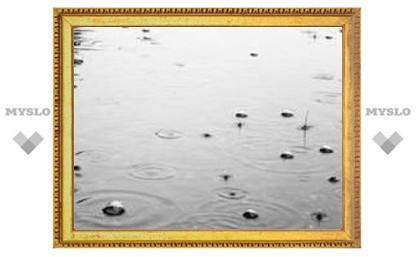 Когда в Туле закончатся дожди