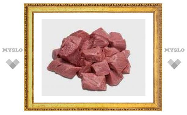 Еврокомиссия не смогла убедить Россию ввозить мясо из Польши