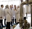 Тульский молочный комбинат запустил производство элитных сыров