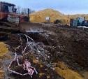 Тульский Медвенско-Осетровский водозабор защитят от повреждений