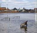 Фоторепортаж: В Тулу и область пришел паводок