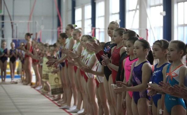 Тульские гимнастки завоевали 7 медалей на соревнованиях в Новомосковске