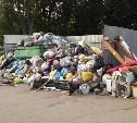 Роспотребнадзор оштрафовал тульских коммунальщиков за мусор на контейнерных площадках