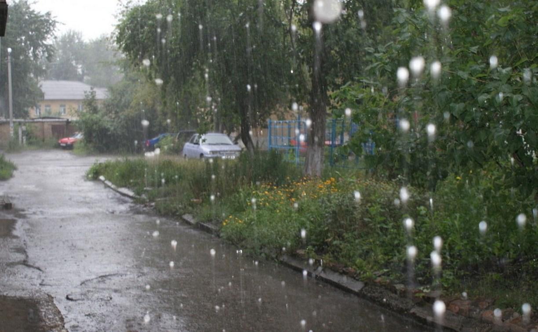 Погода в Туле 1 июля: дождь, град, гроза и до 30 градусов тепла