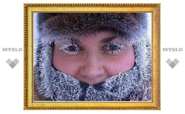 Выходные в Туле обещают быть морозными