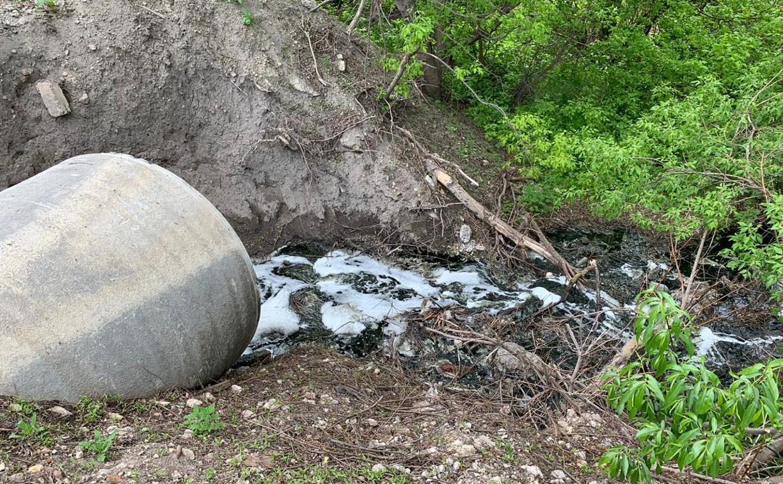 Нашествие мошкары, гниющая свекла и вонючие пруды в Богородицком районе: жители бьют тревогу