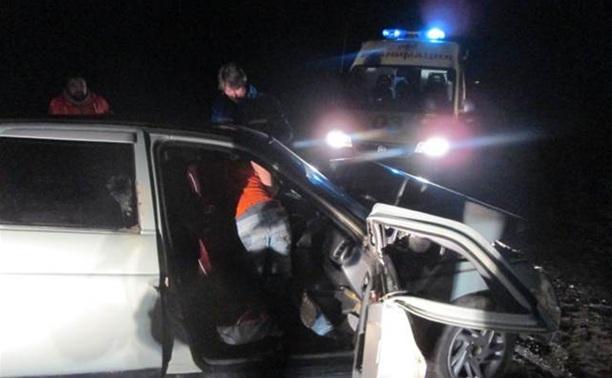 В ДТП под Тулой пострадали два человека