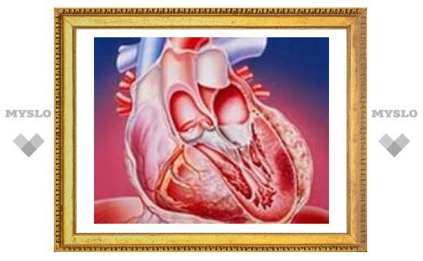 Британские ученые вырастили сердечные клапаны из стволовых клеток