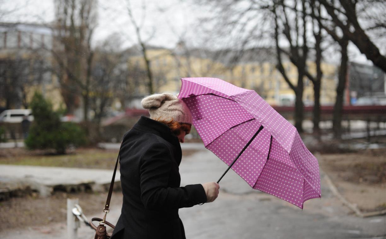 Погода в Туле 31 марта: дождливо, ветрено и прохладно