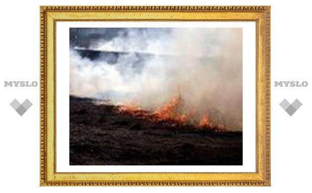 Под Тулой из-за сухой травы сгорели два человека