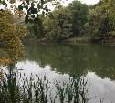 В Платоновском парке сделают пляж и почистят пруд