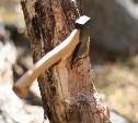 В Ясногорском районе ищут лесных браконьеров