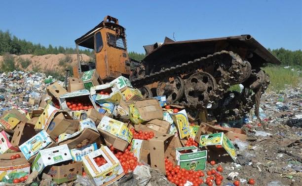 Россельхознадзор объяснил, почему нельзя передать санкционные продукты в соцучреждения