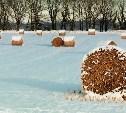 В Ефремове с поля украли 15 тонн сена
