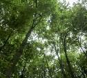 В Тульской области создадут национальный парк