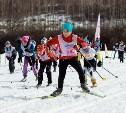 Туляков приглашают на «Яснополянскую лыжню»