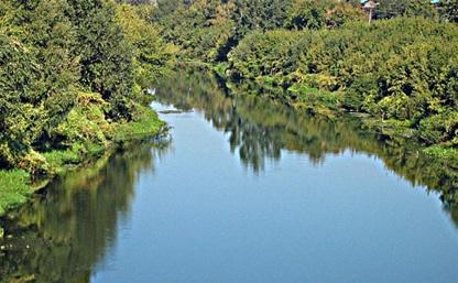 С начала плавательного сезона в Тульской области утонули 16 человек