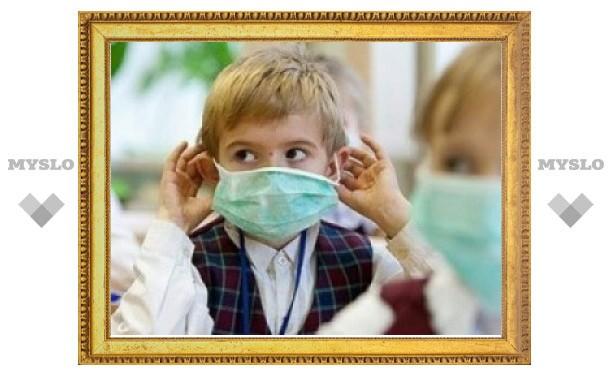 В Туле из-за эпидемии гриппа закрывают школы