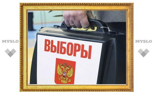 На выборах Президента в Тульской области будут работать европейцы