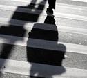 В Туле ГИБДД проведет «облаву» на пешеходов
