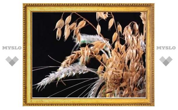 Рост цен в России заставил Минсельхоз заняться продажей зерна