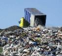 Активисты ОНФ займутся решением экологической проблемы в стране