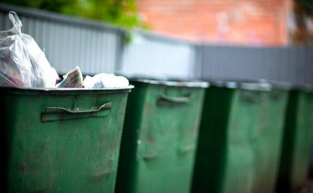 Резкого повышения тарифов за вывоз мусора для населения Тульской области не будет