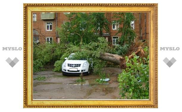 Ураган в Тульской области: трое раненых, 35 искореженных автомобилей