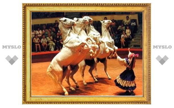 В Тулу едет цирк «Тамерлан»