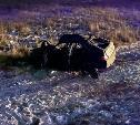 В Тульской области в жутком ДТП с грузовиком погибла женщина