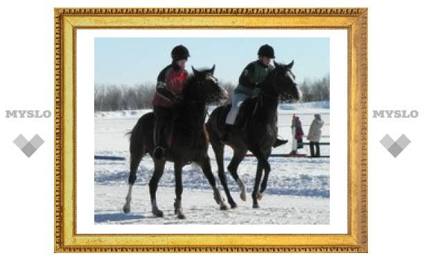 В тульском парке прошли конные соревнования