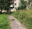 Управляющие компании Тулы  будут штрафовать за некошеную траву во дворах