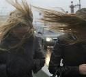 Погода 10 февраля: в Туле ожидается сильный ветер и небольшой снег