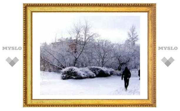Под Тулой началась зима