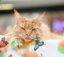 Названы самые популярные кошки в России