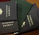 Более 15 млн россиян проверят на «тунеядство»