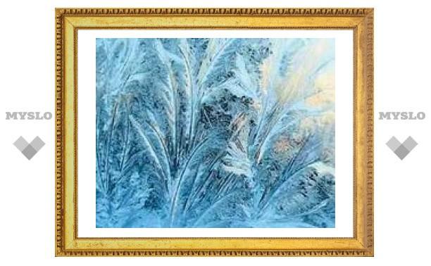 2 января: По морозу узнай погоду в Туле летом