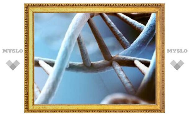 В ДНК нашли гигантские суперструктуры