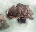 Археологи нашли в Туле на улице Металлистов уникальный изразец печи и монеты Ивана Грозного