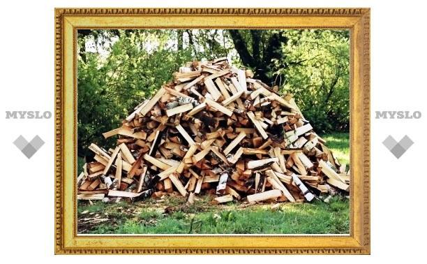 Тулякам предложили бесплатно забрать древесину