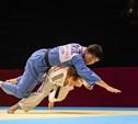 Тула не осталась в стороне от грандиозного форума боевых искусств