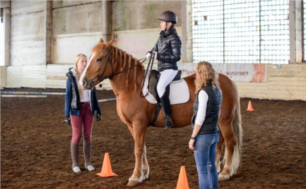 В Прилепах прошли соревнования по конному спорту
