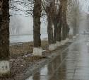 Погода в Туле 21 декабря: облачно, сухо, южный ветер