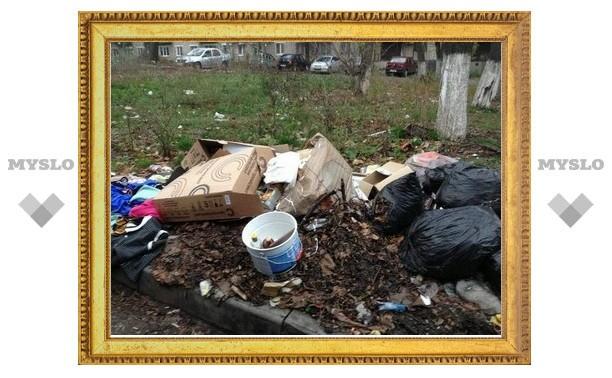 """У нас что, улица - место для мусора?"" - Александр Ядыкин"