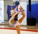 Художественные гимнастки закружили Тулу в «Осеннем вальсе»