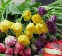 Тульское МКП «Декоративные культуры» вырастило более 13 тысяч тюльпанов