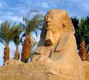Владимир Путин поручил правительству приостановить полеты российской авиации в Египет