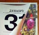 В Госдуме отказались делать 31 декабря выходным днём