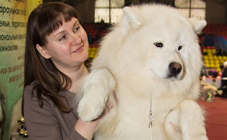 30 ноября в Туле пройдёт Всероссийская выставка собак