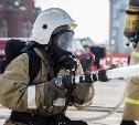 30 апреля в Центральном парке пройдет праздник в честь 366-летия пожарной охраны